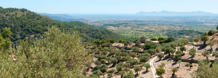 SA Scenic Mallorca 02